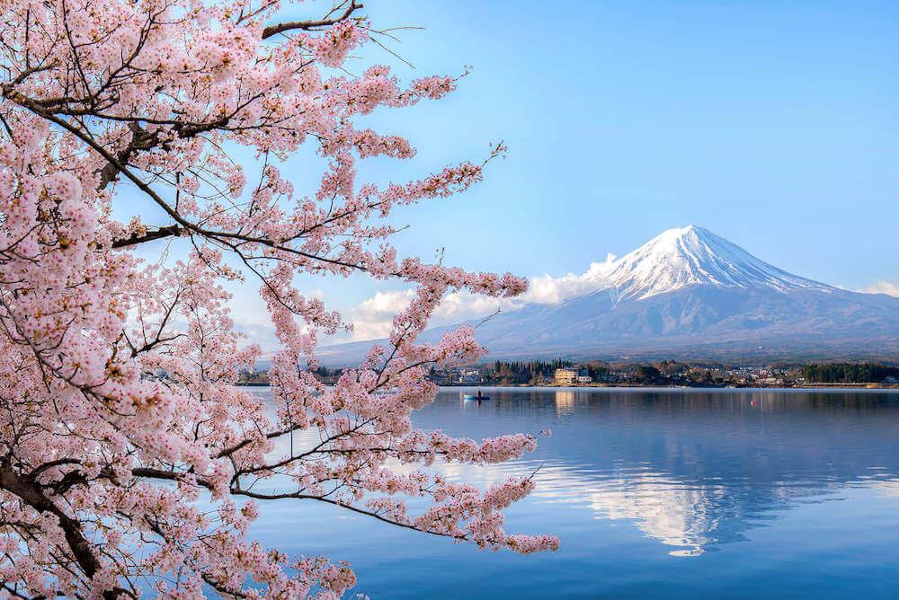 Corsi di giapponese